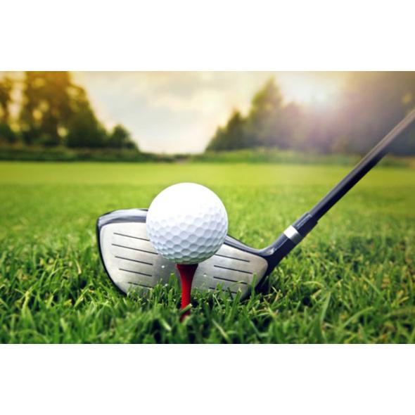 Golf-Coaching mit PGA Professional in Tutzing