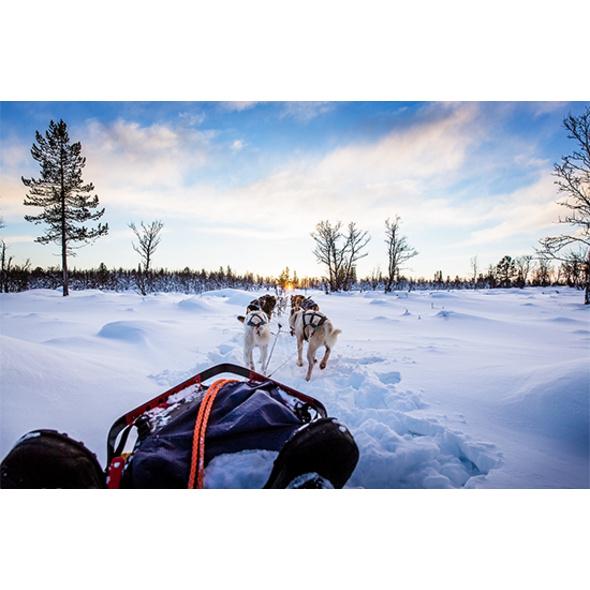 Lappland Aktivurlaub mit Flug (4 Tage)
